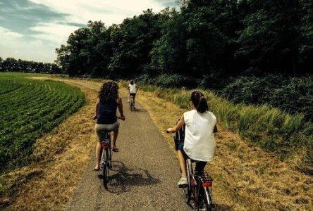 Mantova Bike