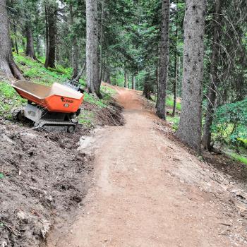 realizzazione bike park
