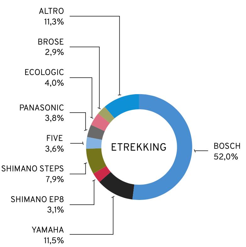 Motori e-bike più utilizzati nel 2021 per la categoria e-trekking